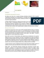 Newsletter Licinia de Campos 44- Alimentos de Alto Risco