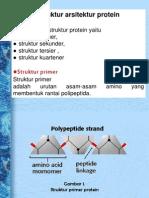 Protein Kel 1 Juga