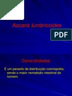 Aula 9 - Ascaris Lumbricoides