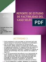 Ejem_reporteFactibiliadad