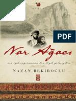 Nazan Bekiroğlu - Nar Ağacı