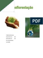 desflorestaopdf-100514083130-phpapp01