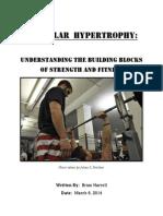 Muscular Hypertrophy