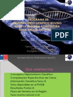 Seminario Tecnico 6 Sept 2013 Avances PMGB v1.0