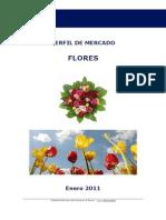 Perfil Mercado Flores