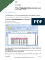 Excel Cap10