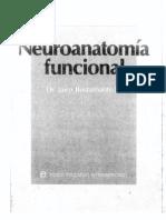 Neuroanatomia Bustamante