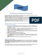 USSD.pdf