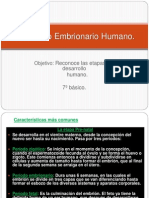 Desarrollo Embrionario Humano