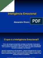 intelignciaemocional4-101107202717-phpapp02