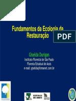 Fundamentos Ecologia Da Restauração