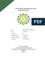 Laporan Praktikum Mikrobiologi Lanjut