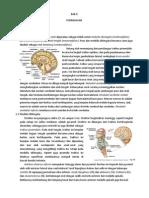 Otak Dan Saraf Kranial Dalam Makalah Doc