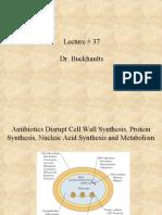 Lecture # 37 Dr. Buckhaults