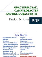 Enterobacteriaceae, Vibrio, Campylobacter and Helicobacter (1) Faculty