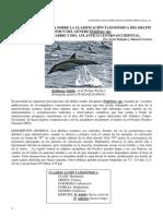 controversia sobre delfín común, Delphinus spp en el Caribe