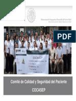 Cocasep Sec de Sal - Presentacion