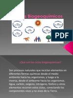 Ciclos BiogeoquÃ_micos[1].pdf