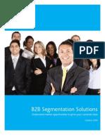 Nielsen - B2B Segmentation White Paper