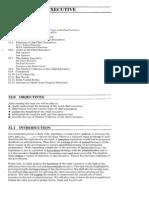 Public Administration Unit-32 Chief Executive