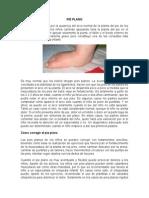 PIE PLANO 1.doc