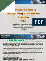 Fuego y Gas