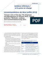 rapport NICE GT SFA.pdf