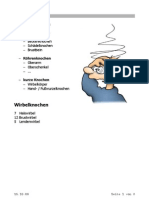 Knochenbau Polytrauma und andere Traumen