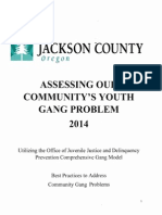 Jackson County gangs assessment report