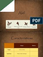 alef-100114021834-phpapp01 (2)