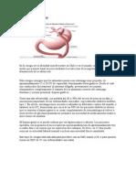 CIRUGIAS Y PROCEDIMIENTOS.doc