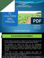 Cultivo Del Frijol (Martínez-unesr)