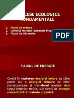 C8_flux Energie