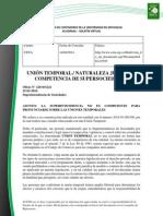 Doc. 579 UNIÓN TEMPORAL. NATURALEZA JURÍDICA..pdf