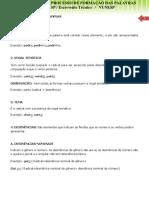 ESTRUTURA-E-PROCESSO-DE-FORMAÇÃO-DAS-PALAVRAS-Alunos.pdf