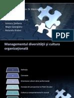 Managementul Diversitatii Si Cultura Organizationala (Echipa 9)