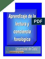 Conciencia (2)