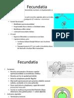 C1- Fecundatia