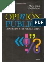 2009 Opinión Pública una Mirada desde América Latina