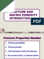 05 Fracture Matrix Interaction
