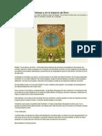 14 - 02 - 2014 Cómo Entrar en El Tiempo y en El Espacio de Dios - SANDRO MAGISTER