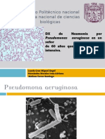 pseudomona aeruginosa