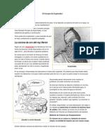 HISTORIA DEL PERIODISMO MUNDIAL.docx