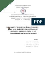 Proyecto de Inversion Adriana Gil 2009