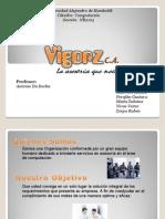 Proyecto Vigorz