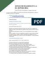 Misa Domingo de Ramos en La Pasion Del Señor 2014
