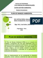 Pma 2014 - Del Castillo - Mejia