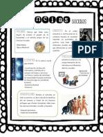 Ciencias Sociales PDF