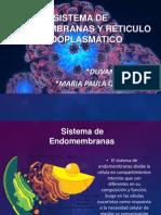 6. Reticulo Endoplasmatico y Sisitemas de Endomembranas