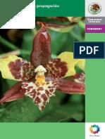 Manual Para La Propagacion de Orquideas[1]